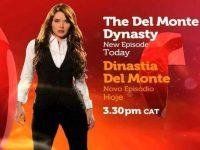 Del Monte Dynasty Telenovela / Los Herederos del Monte Paula; For Love or Money?