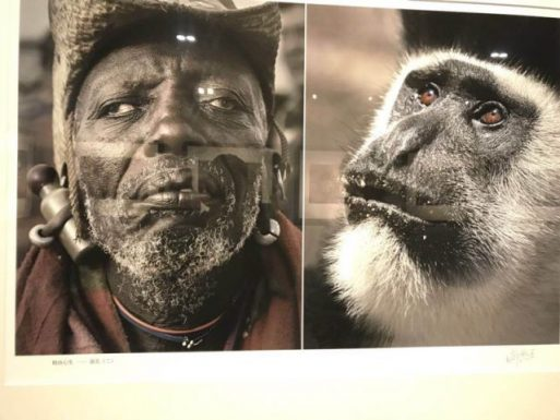 Chinese Picture Exhibit Compared Africans To Animals