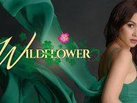 Wildflower Philippine drama tv series Full Story, Cast