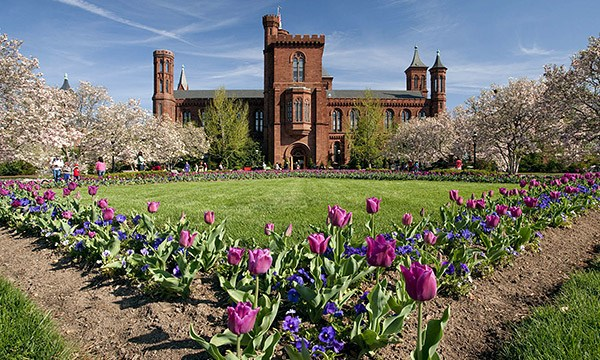 Smithsonian Institution Fellowship Program 2019